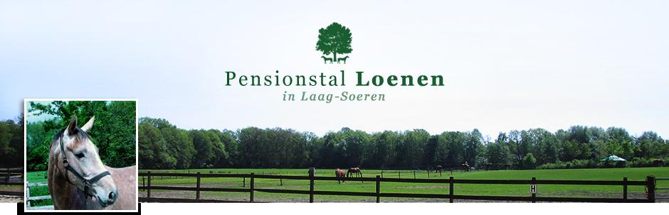 Stal Loenen, de gezellige pension- en fokstal in Laag-Soeren!
